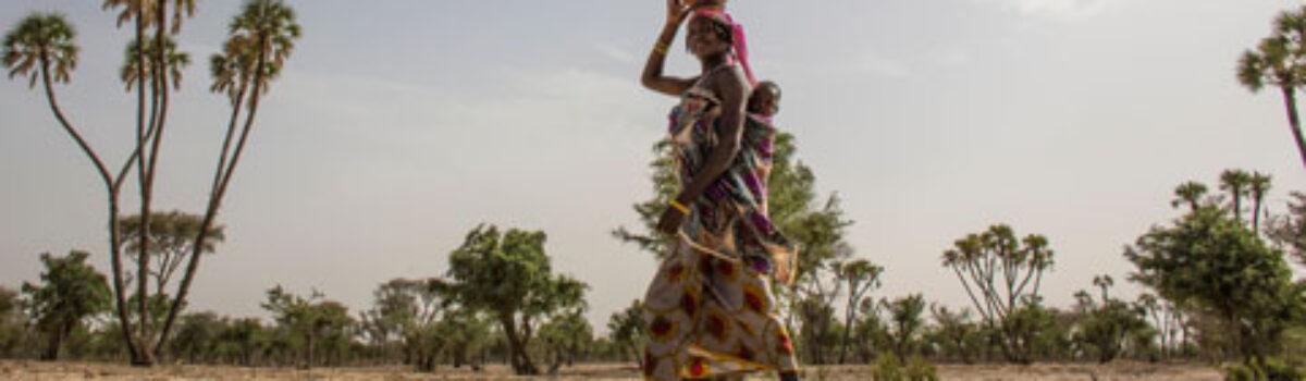 El Banco Mundial planea invertir más de USD 5000 millones en las zonas áridas de África
